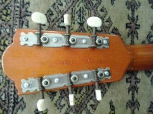 Banjo 4