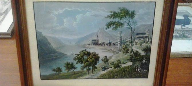 Rhein-Blicke