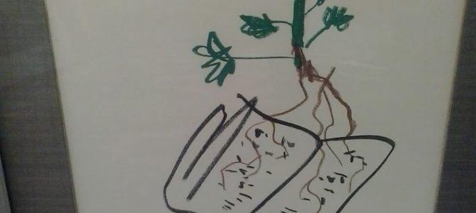 """Pablo Picasso, Grafik """"Fleur"""" VERKAUFT"""